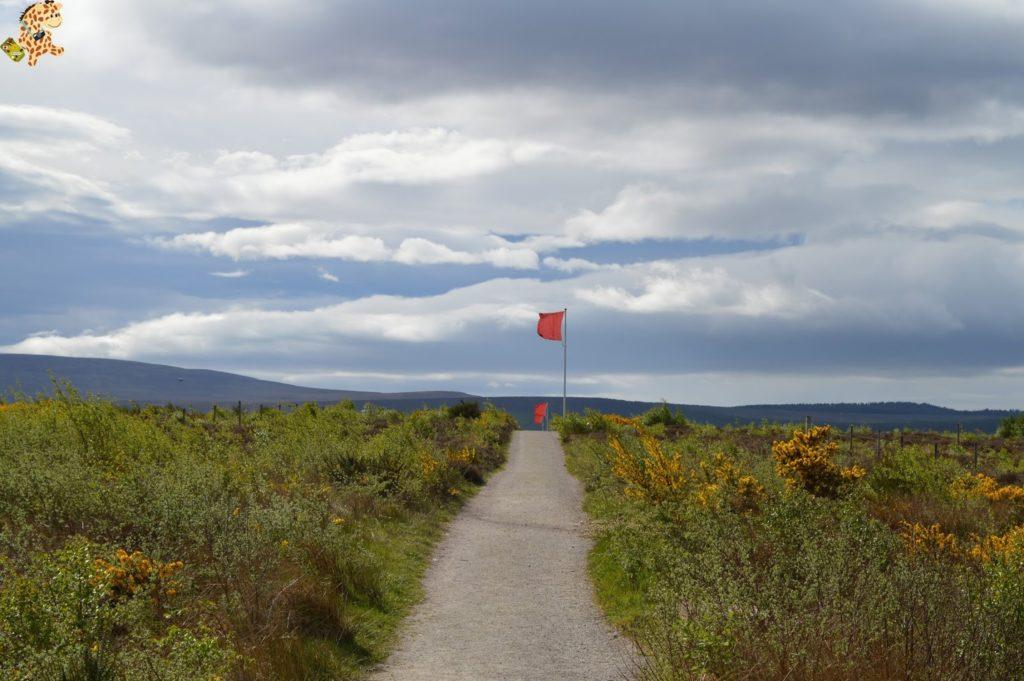 queverenlashighlands281529 1024x681 - Las Highlands: qué ver en las Tierras Altas de Escocia