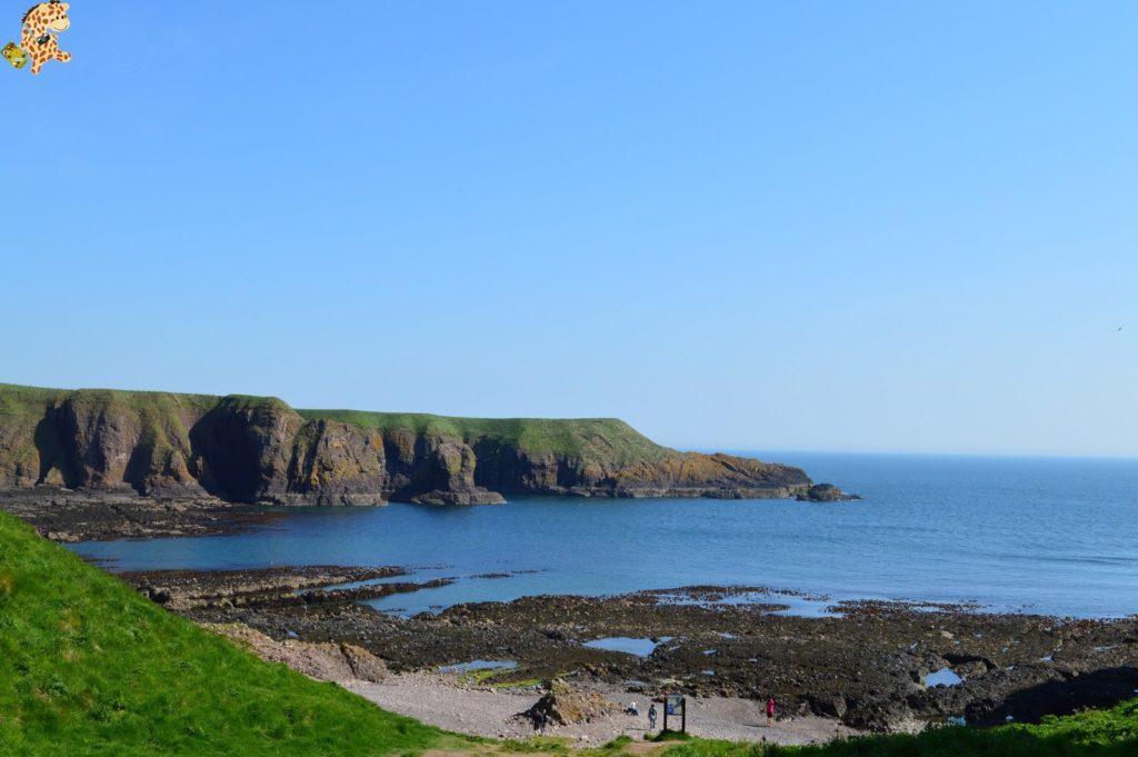 saintandrewsydunnottarcastle282929 1024x681 - Saint Andrews y Dunnottar Castle