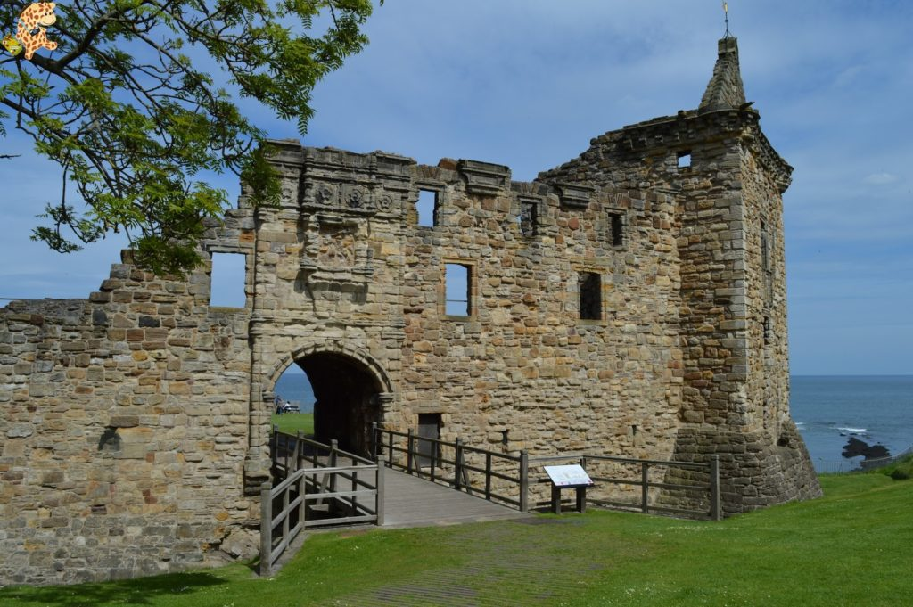 saintandrewsydunnottarcastle28329 1024x681 - Saint Andrews y Dunnottar Castle