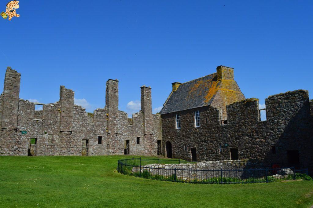 saintandrewsydunnottarcastle283529 1024x681 - Saint Andrews y Dunnottar Castle