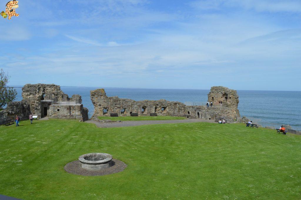 saintandrewsydunnottarcastle28429 1024x681 - Saint Andrews y Dunnottar Castle