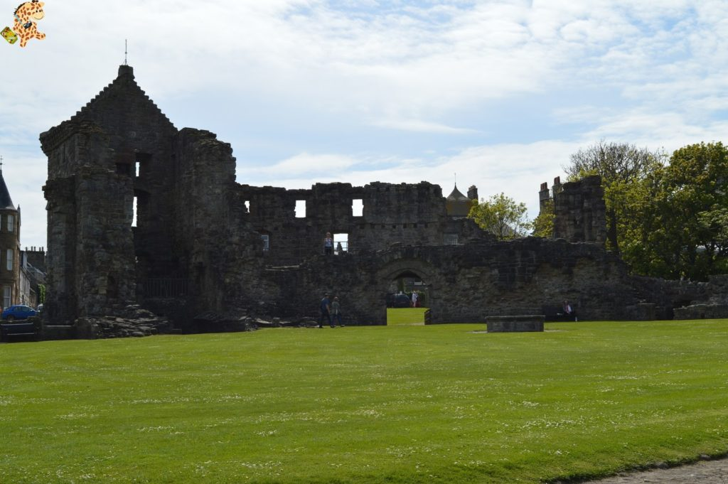 saintandrewsydunnottarcastle28629 1024x681 - Saint Andrews y Dunnottar Castle