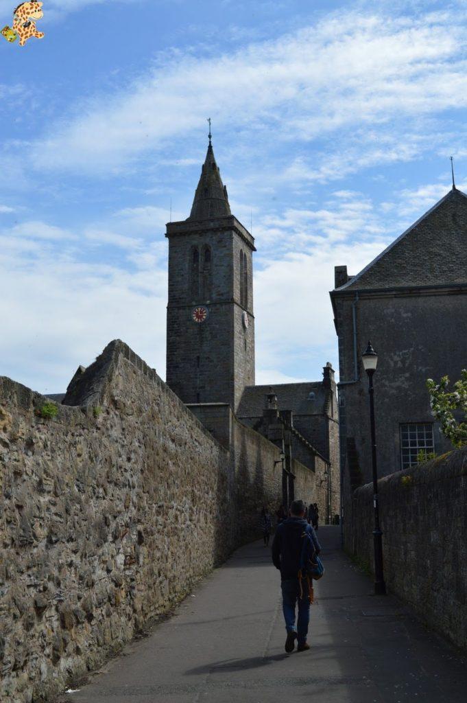saintandrewsydunnottarcastle28729 681x1024 - Saint Andrews y Dunnottar Castle