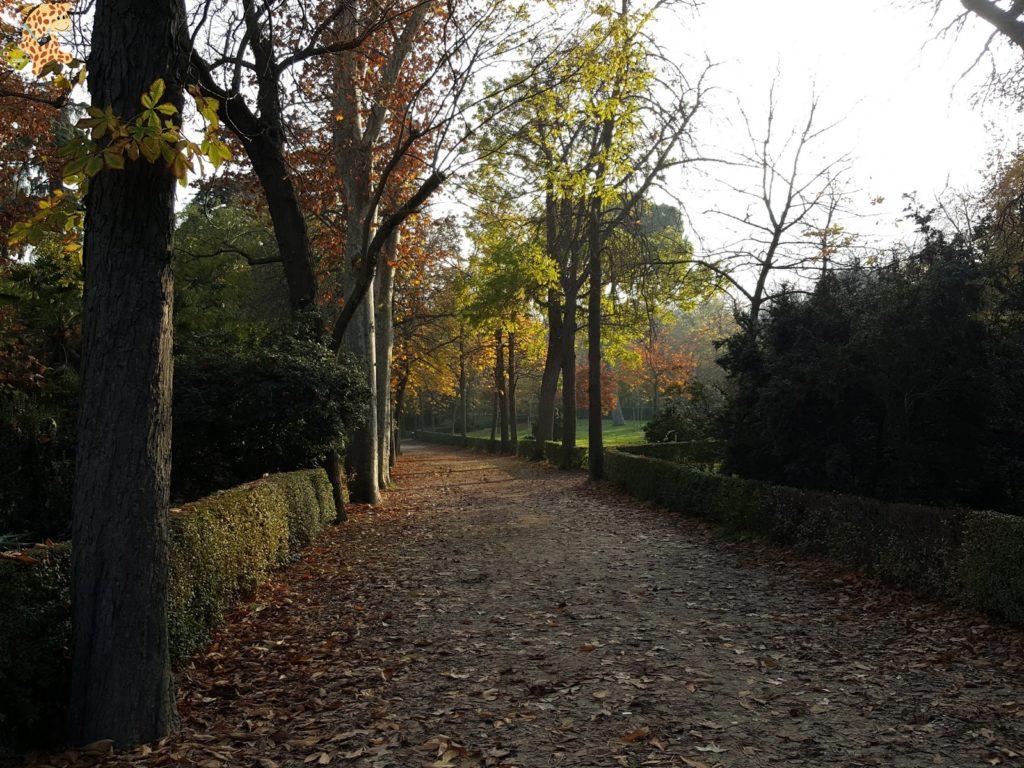 madridenfinde285929 1024x768 - Madrid en 2 días: qué ver y qué hacer