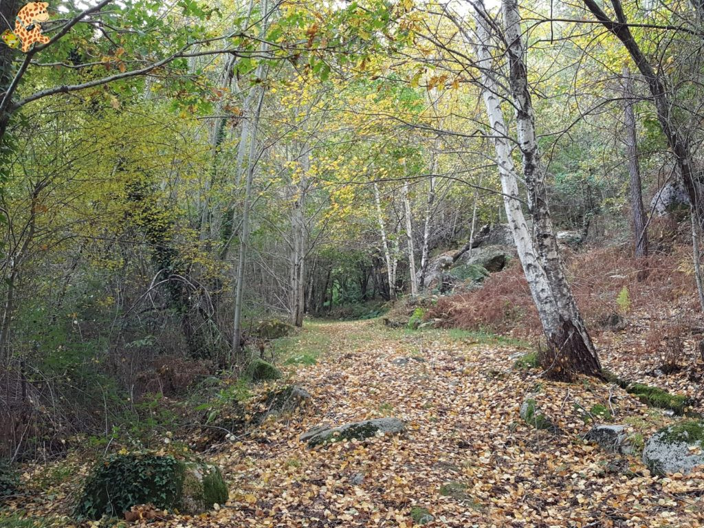 surdeOurensebaixalimiaterrascelanova282229 1024x768 - Sur de Ourense: Baixa Limia y Terras de Celanova en un fin de semana