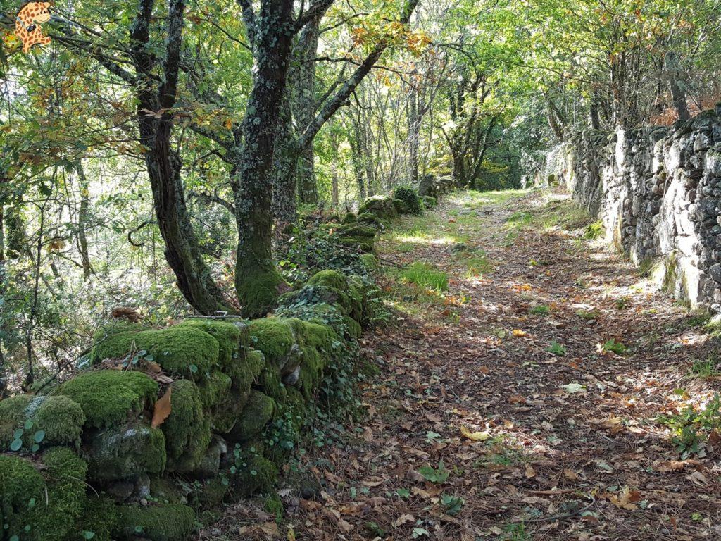surdeOurensebaixalimiaterrascelanova28229 1024x768 - Sur de Ourense: Baixa Limia y Terras de Celanova en un fin de semana