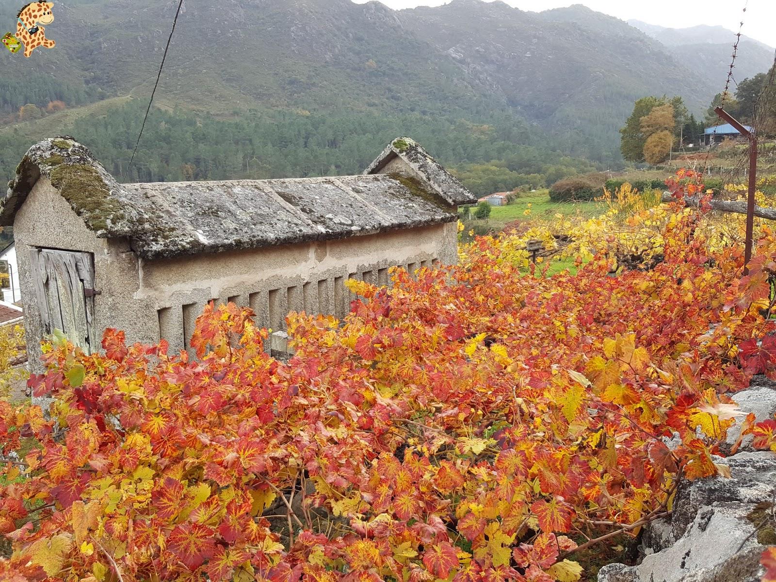Sur de Ourense: Baixa Limia y Terras de Celanova en un fin de semana