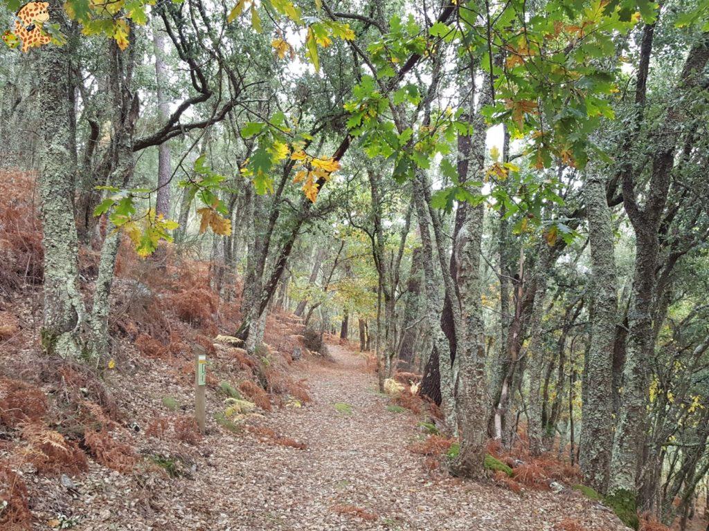 surdeOurensebaixalimiaterrascelanova282529 1024x768 - Sur de Ourense: Baixa Limia y Terras de Celanova en un fin de semana