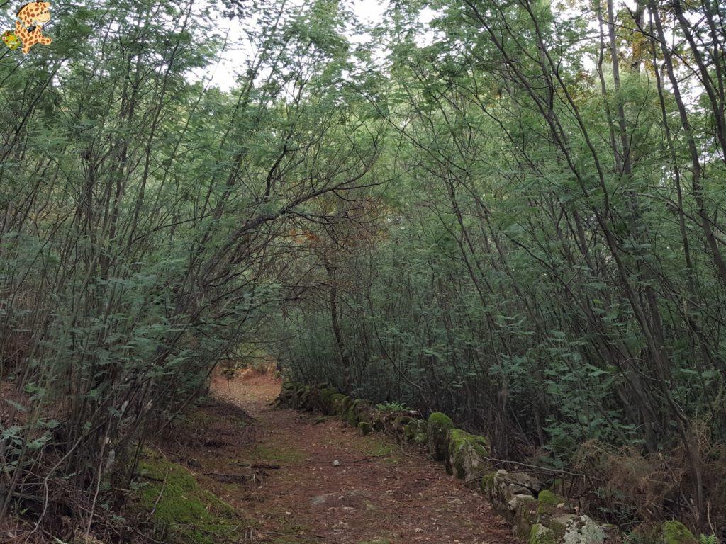 surdeOurensebaixalimiaterrascelanova282929 1024x768 - Sur de Ourense: Baixa Limia y Terras de Celanova en un fin de semana