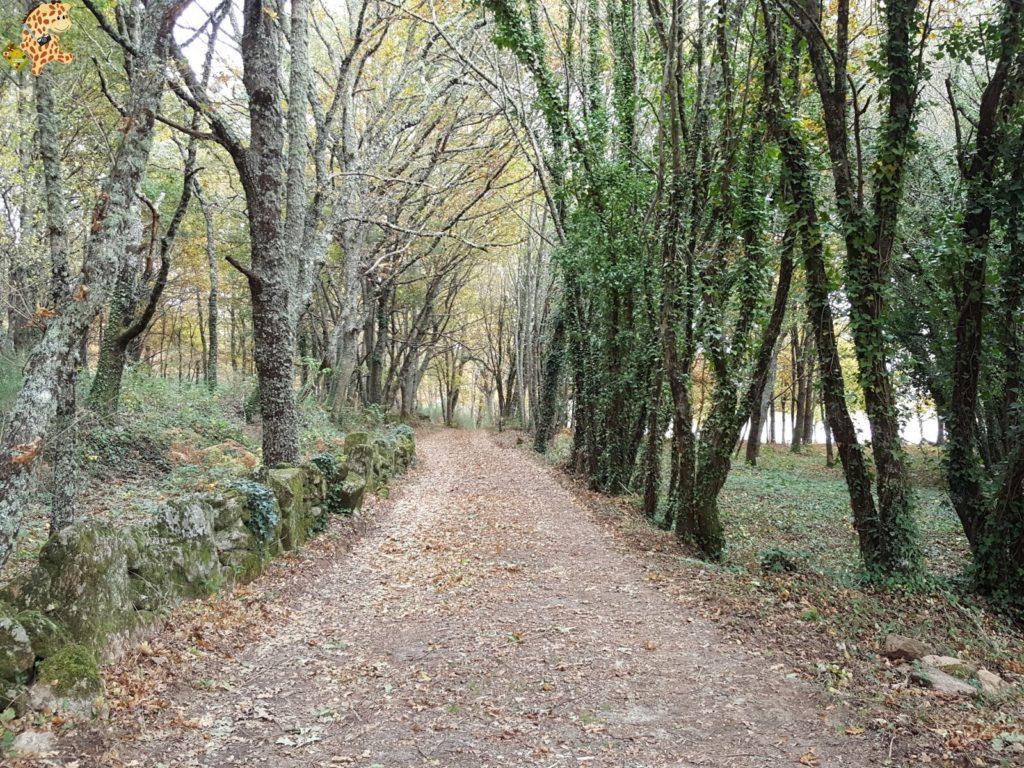 surdeOurensebaixalimiaterrascelanova284229 1024x768 - Sur de Ourense: Baixa Limia y Terras de Celanova en un fin de semana