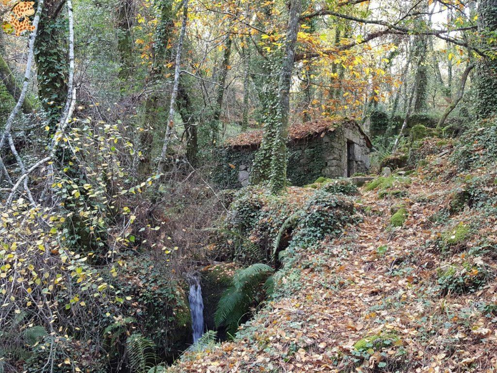 surdeOurensebaixalimiaterrascelanova28429 1024x768 - Sur de Ourense: Baixa Limia y Terras de Celanova en un fin de semana
