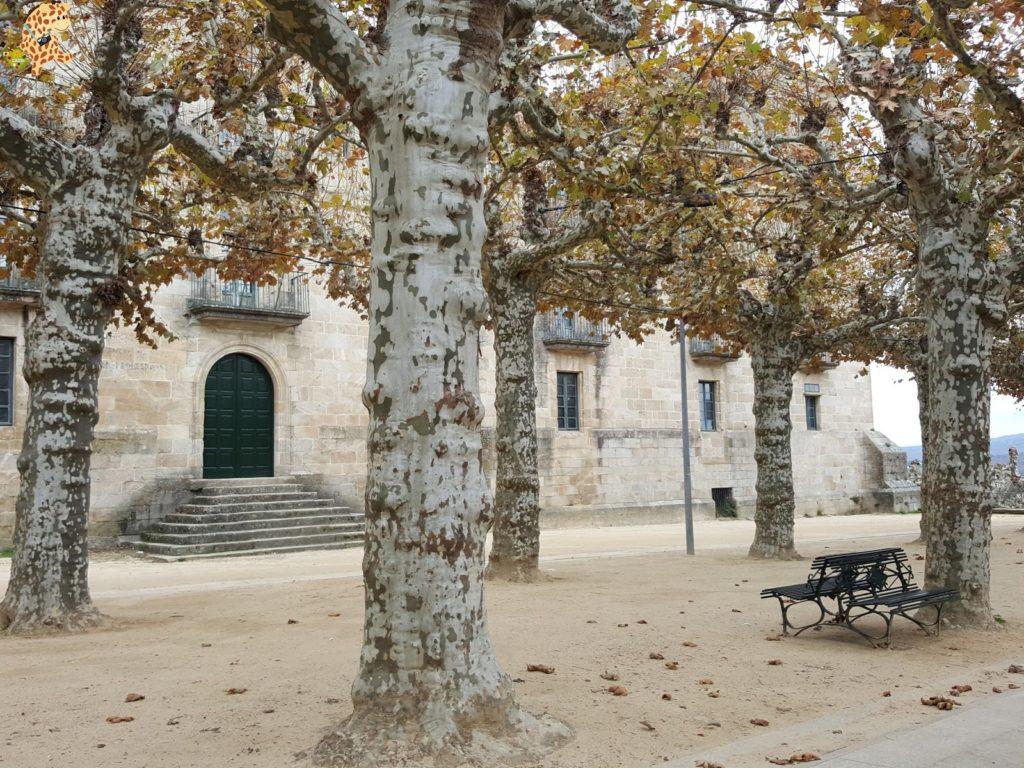 surdeOurensebaixalimiaterrascelanova286929 1024x768 - Sur de Ourense: Baixa Limia y Terras de Celanova en un fin de semana