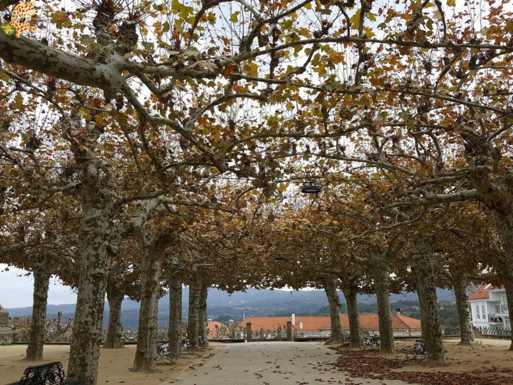 surdeOurensebaixalimiaterrascelanova287129 1024x768 - Sur de Ourense: Baixa Limia y Terras de Celanova en un fin de semana