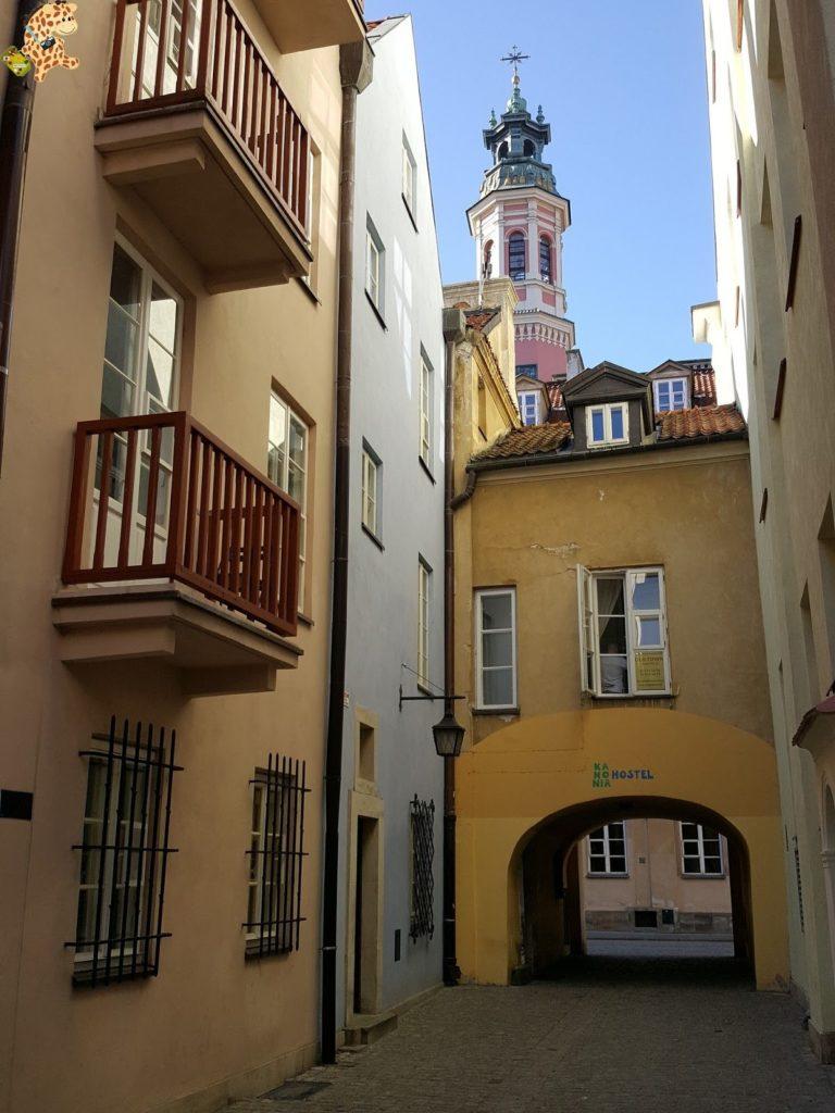 queverenvarsovia282129 768x1024 - Varsovia en un día: qué ver y qué hacer