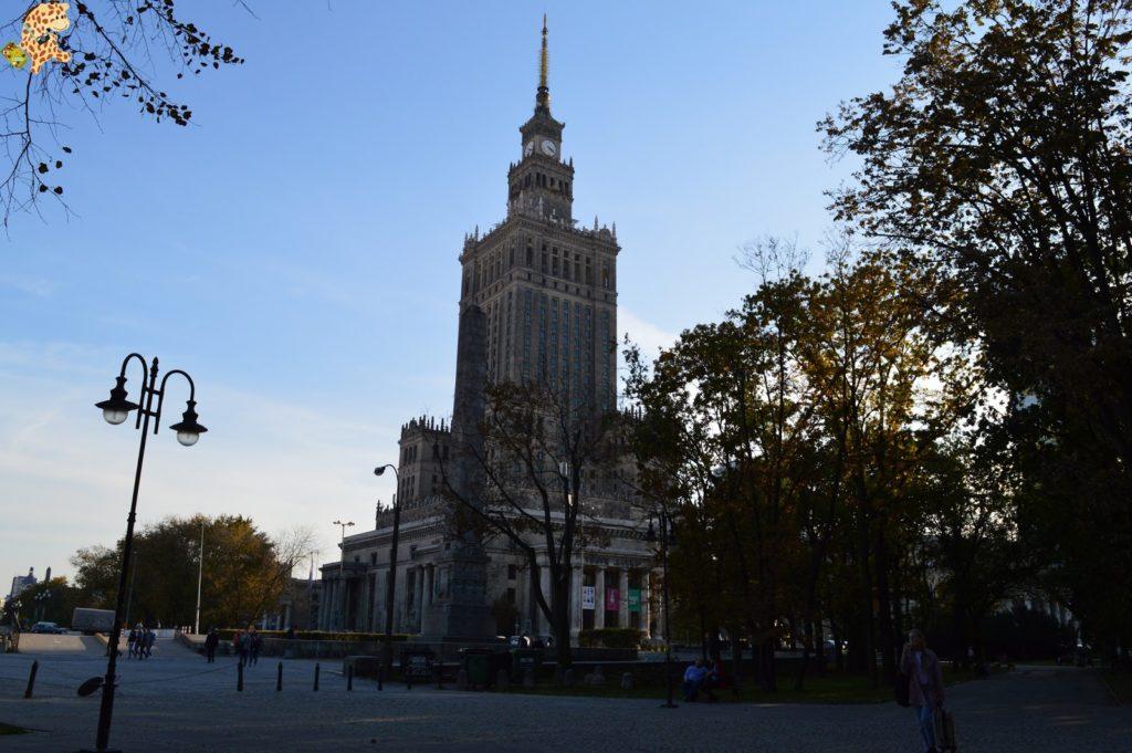queverenvarsovia284829 1024x681 - Varsovia en un día: qué ver y qué hacer