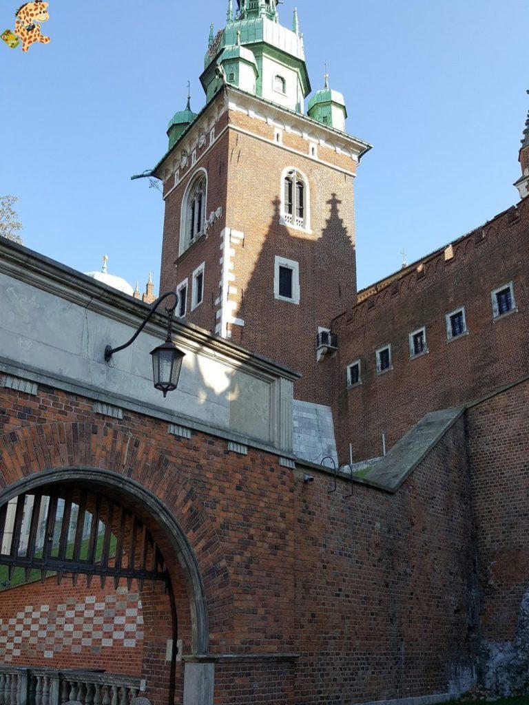 cracoviayminasdesal2817429 768x1024 - Cracovia y las minas de sal de Wieliczka