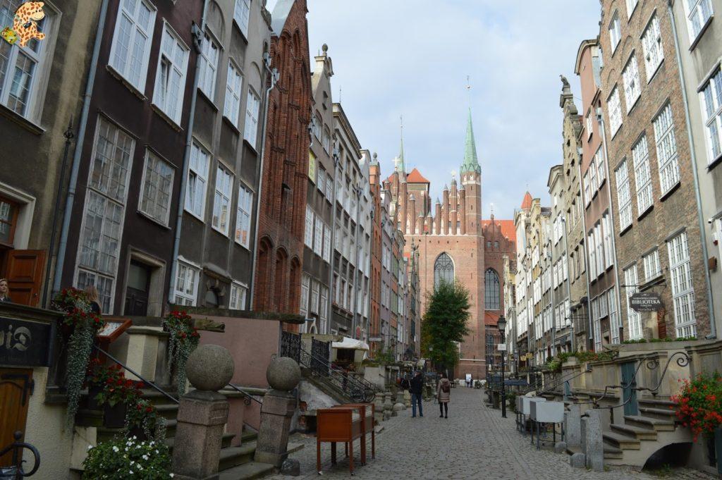 gdanskenundia282729 1024x681 - Gdansk en un día, qué ver