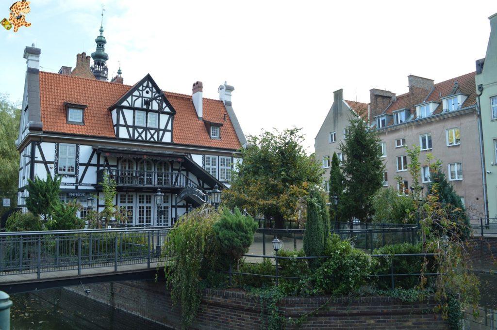 gdanskenundia284029 1024x681 - Gdansk en un día, qué ver
