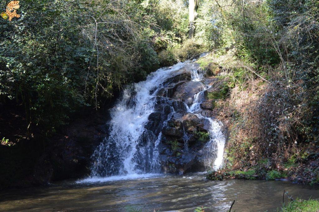 pazodesantacruzderivadulla281429 1024x681 - Pazo de Rivadulla y su magnífico paseo de olivos (Vedra)