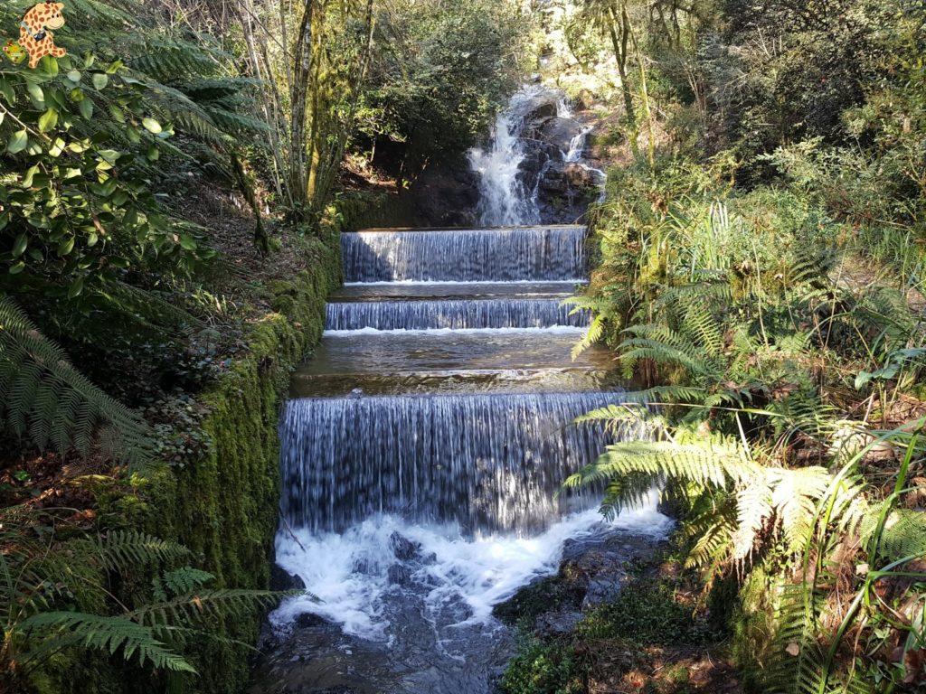 pazodesantacruzderivadulla28229 1024x768 - Pazo de Rivadulla y su magnífico paseo de olivos (Vedra)