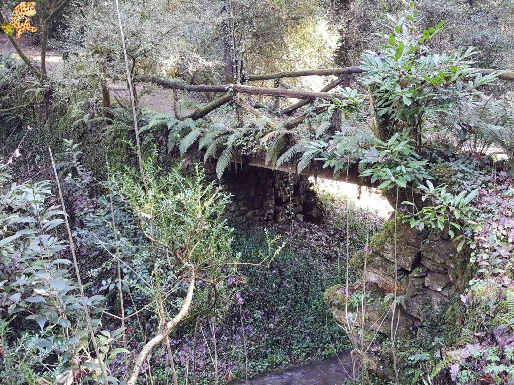 pazodesantacruzderivadulla28529 1024x768 - Pazo de Rivadulla y su magnífico paseo de olivos (Vedra)