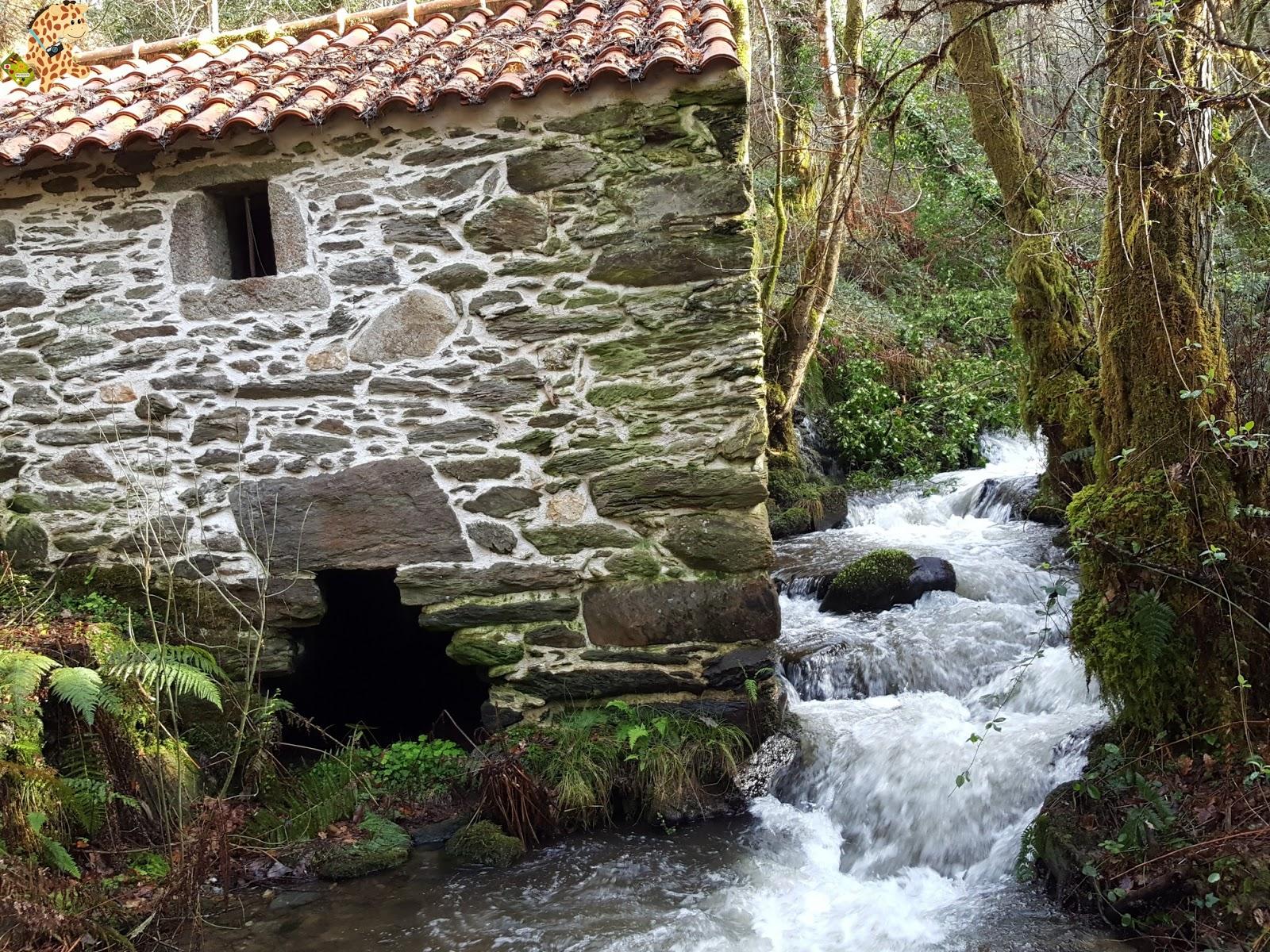 Ruta del Río Medio – Miño
