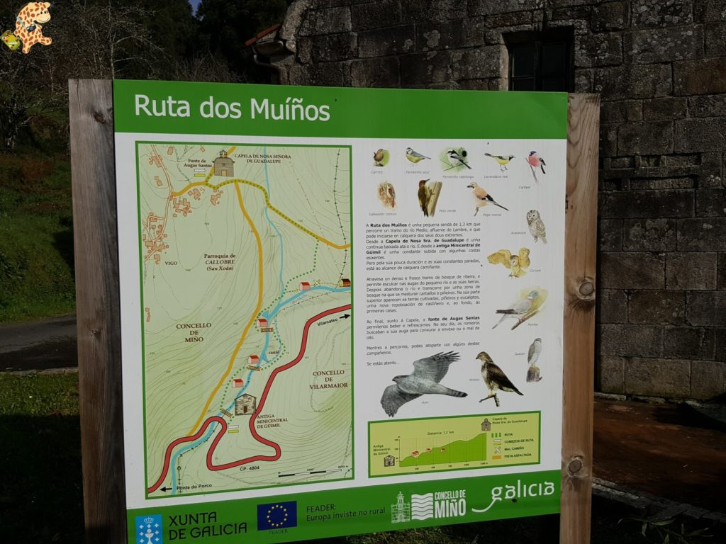 molinosdemiC3B1o282729 1024x768 - Ruta del Río Medio - Miño