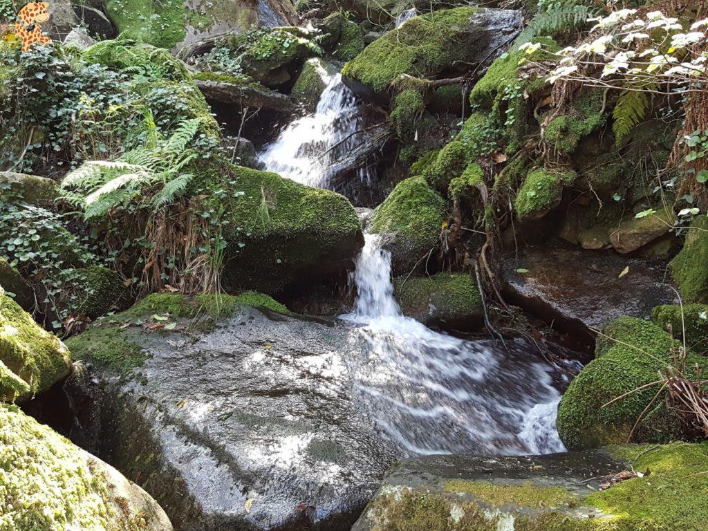 senderismocentralhidroelecticatambre281829 1024x768 - Senderismo en el río Tambre (Noia)