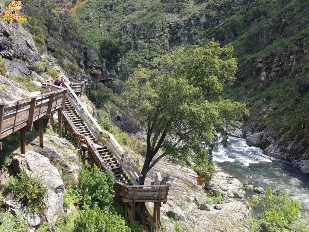 pasarelasdelpaiva281229 1024x768 - Passadiços do Paiva, pasarelas sobre el río Paiva