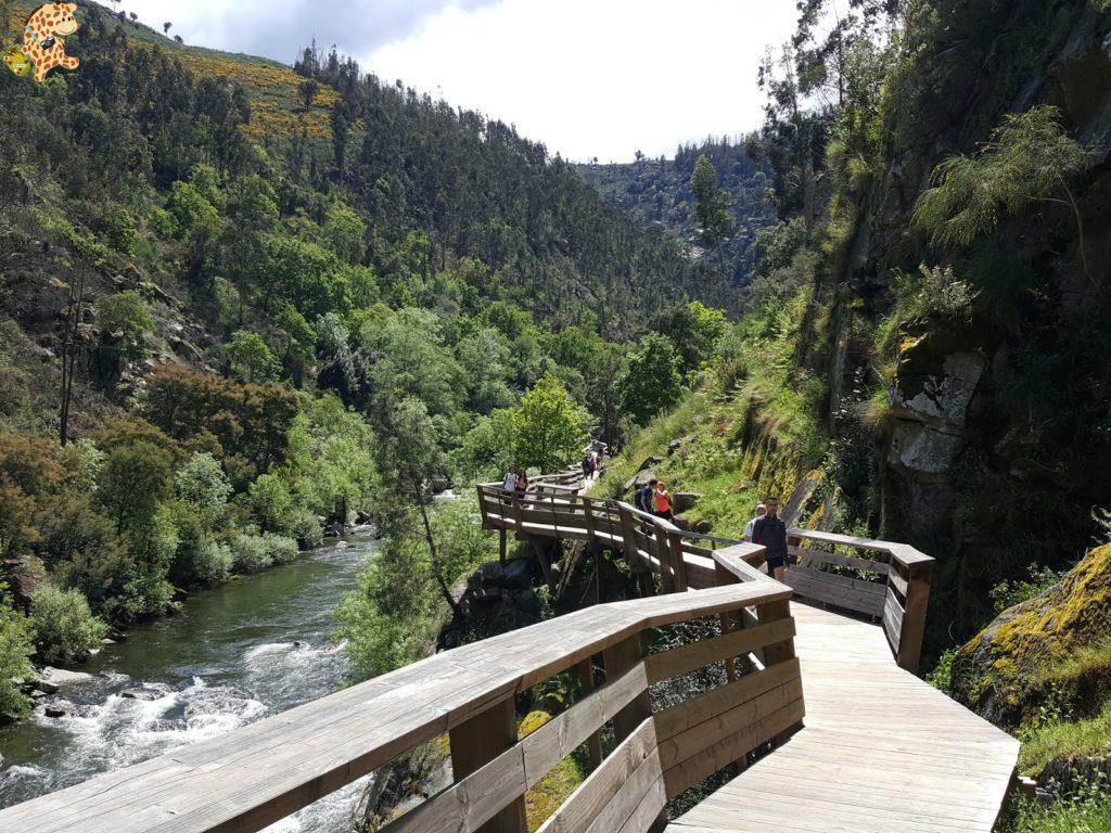 pasarelasdelpaiva281829 1024x768 - Passadiços do Paiva, pasarelas sobre el río Paiva