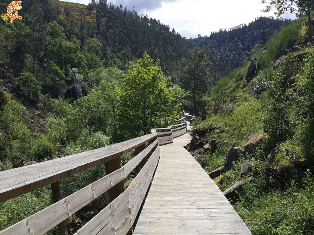 pasarelasdelpaiva281929 1024x768 - Passadiços do Paiva, pasarelas sobre el río Paiva
