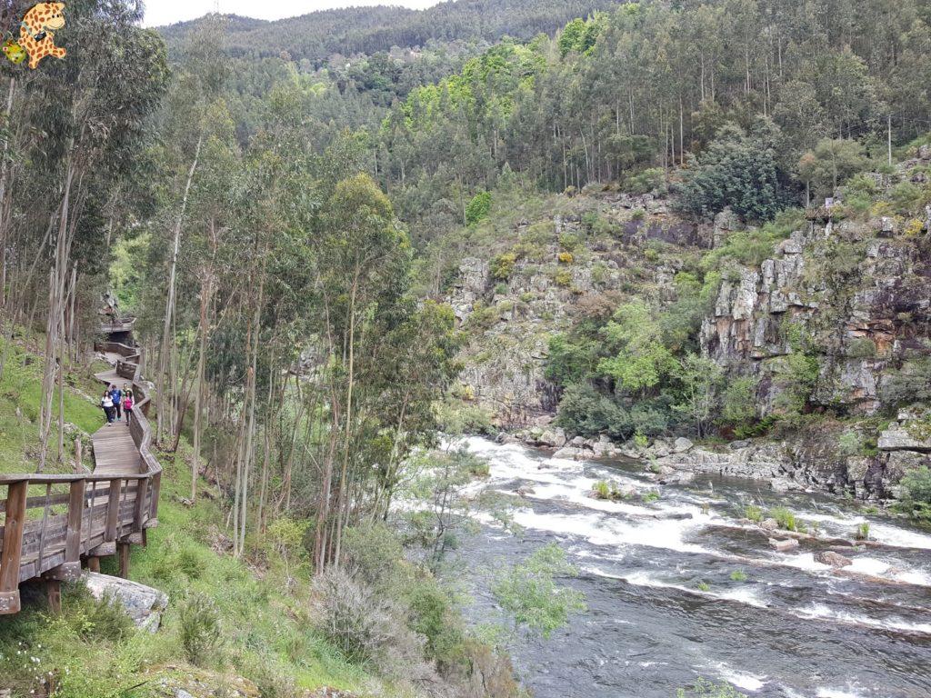 pasarelasdelpaiva28729 1024x768 - Passadiços do Paiva, pasarelas sobre el río Paiva