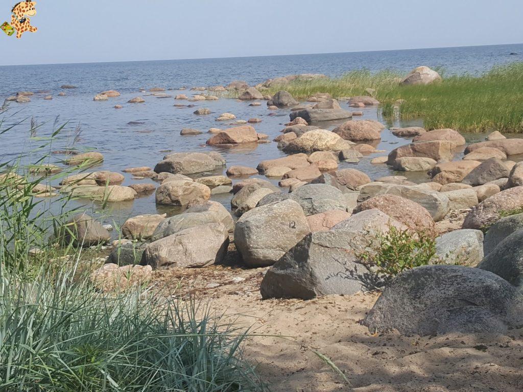parquenaturallahemaaestonia283029 1024x768 - Parque Nacional de Lahemaa, la excursión perfecta desde Tallin