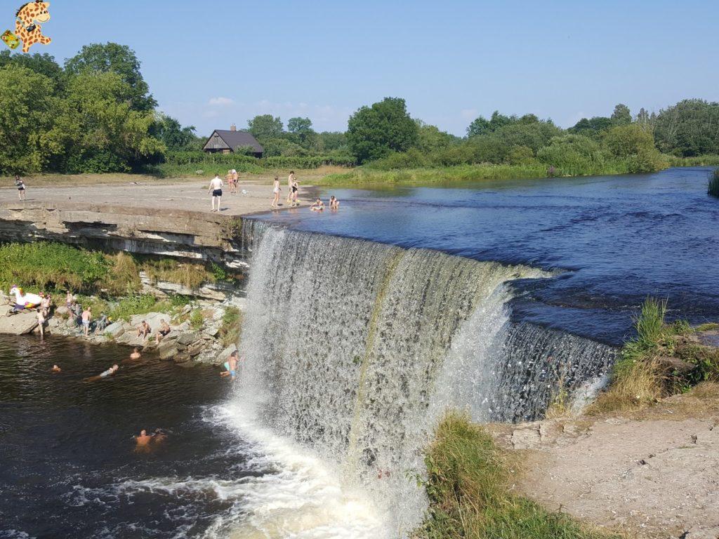 parquenaturallahemaaestonia283329 1024x768 - Parque Nacional de Lahemaa, la excursión perfecta desde Tallin