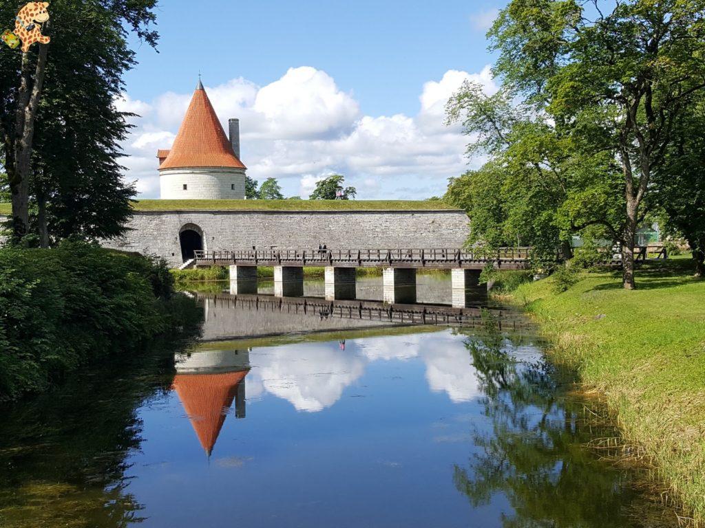 islassaaremaaymuhuestonia282229 1024x768 - Saaremaa y Muhu