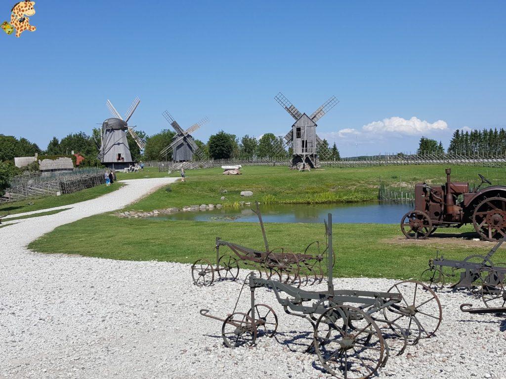 islassaaremaaymuhuestonia283829 1024x768 - Saaremaa y Muhu