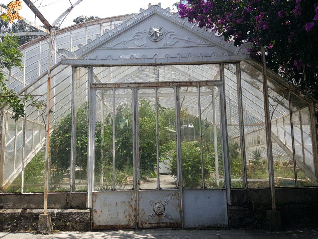 pazo de lourizan 7 1024x768 - Pazo de Lourizán, Pontevedra