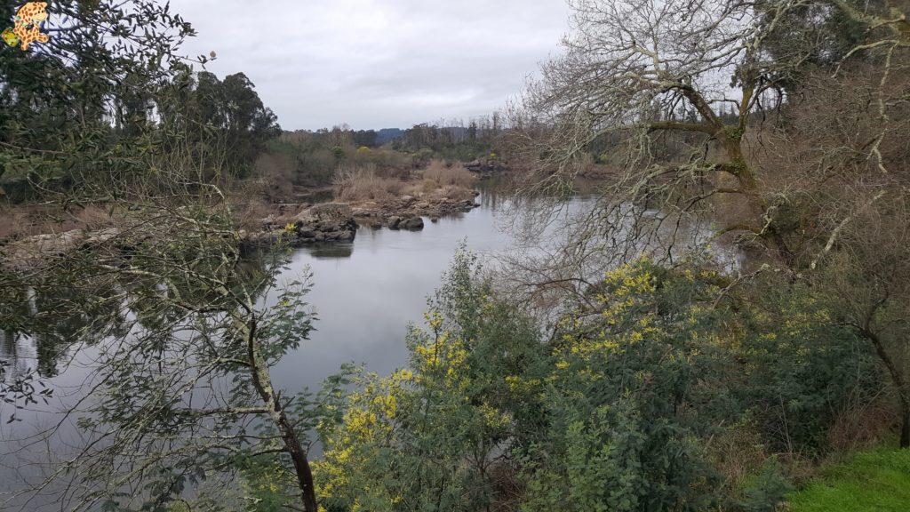 terras do condado paradanta 13 1024x576 - Un fin de semana en Terras do Condado - A Paradanta (Rías Baixas)