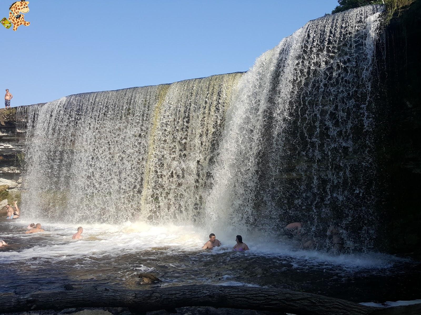 Parque Nacional de Lahemaa, la excursión perfecta desde Tallin