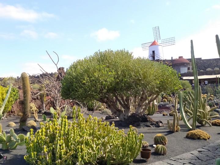 lanzarote fuerteventura y la graciosa 4 - Lanzarote, Fuerteventura y La Graciosa en 10 días
