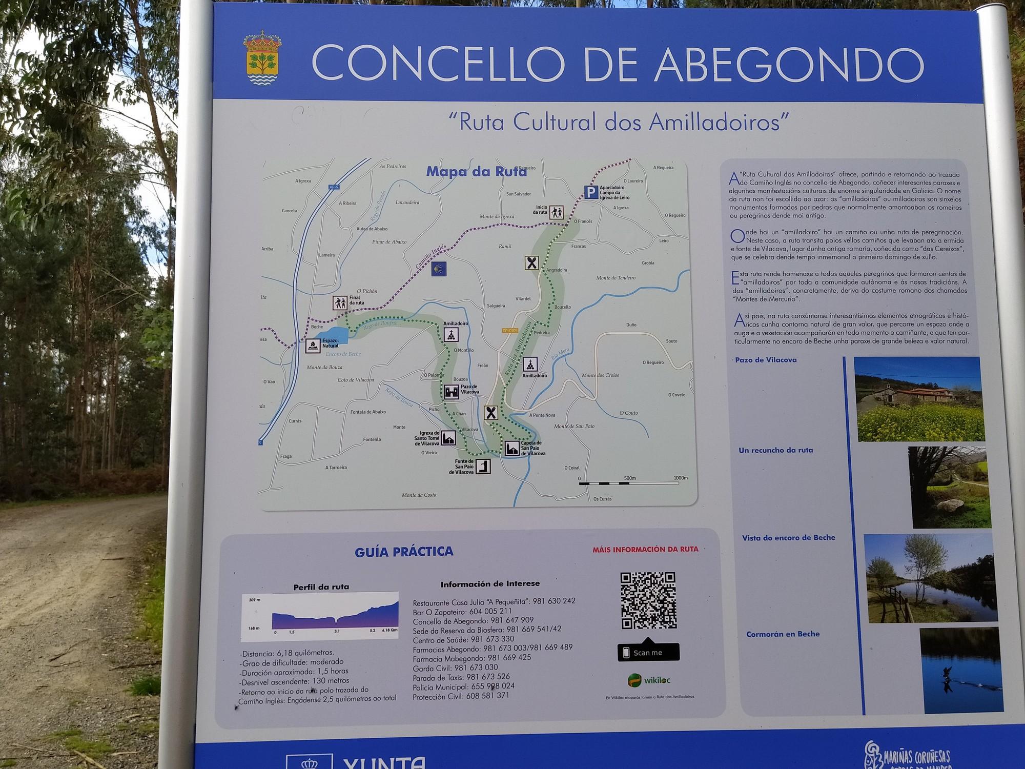senda dos amilladoiros abegondo 17 - Senderismo en Abegondo: ruta dos amilladoiros