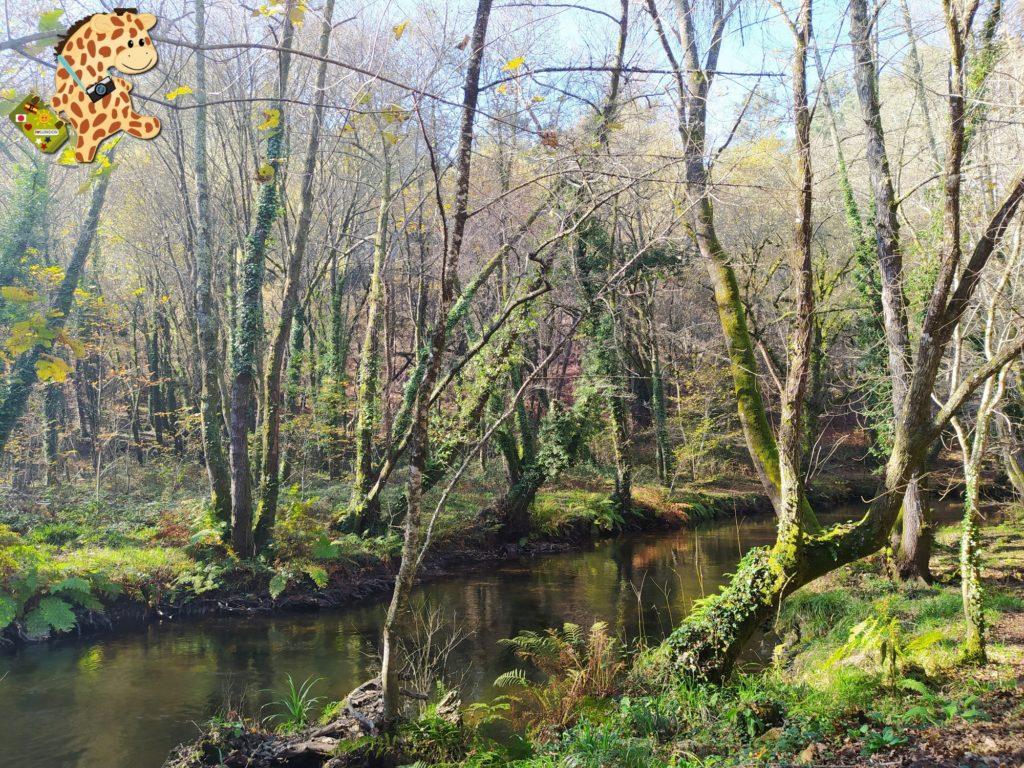 sur de ourense pontedeva e pazos de arenteiro 2 1024x768 - Sur de Ourense: senderismo en Pontedeva y Pazos de Arenteiro