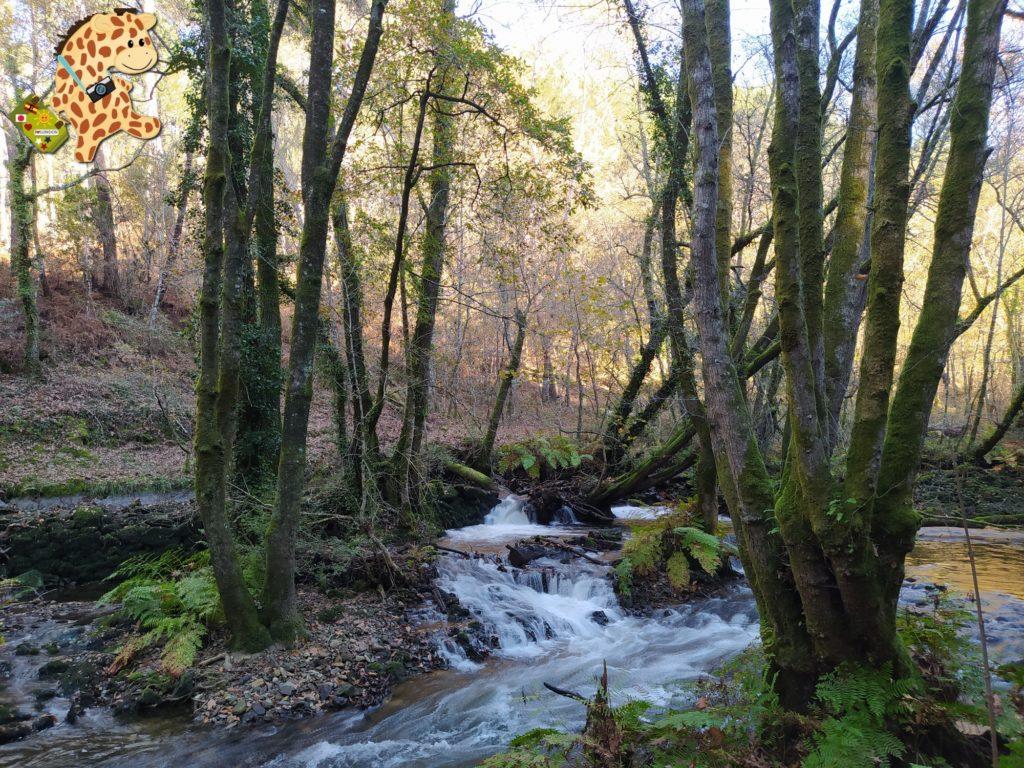 sur de ourense pontedeva e pazos de arenteiro 6 1024x768 - Sur de Ourense: senderismo en Pontedeva y Pazos de Arenteiro