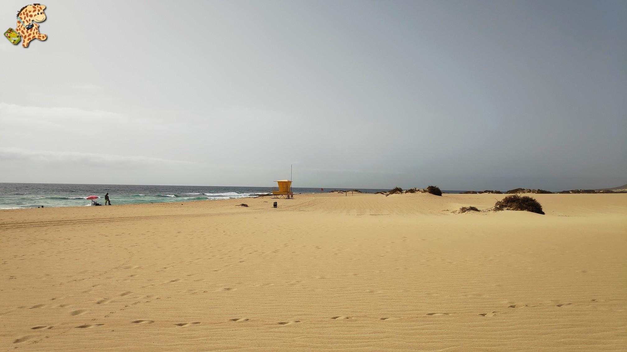 fuerteventura 10 - Fuerteventura desde Lanzarote