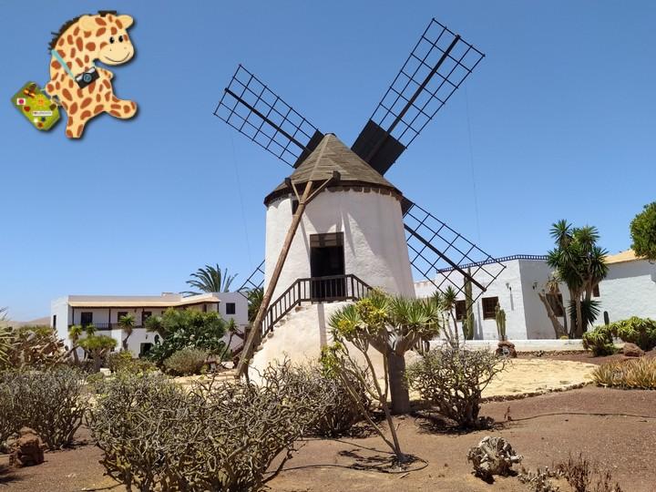 fuerteventura 14 - Fuerteventura desde Lanzarote