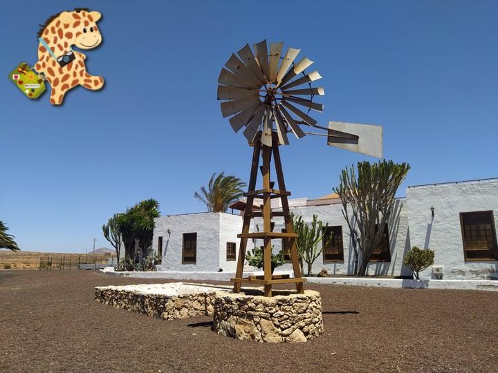 fuerteventura 15 - Fuerteventura desde Lanzarote