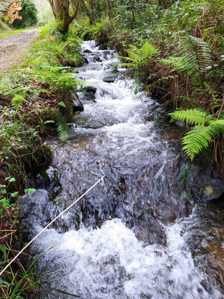 ruta rio sisalde 11 768x1024 - Ruta do río Sisalde, Arteixo (variante roja)