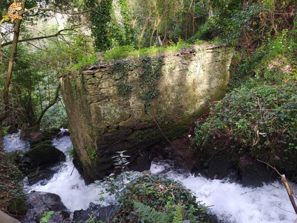 ruta rio sisalde 12 1024x768 - Ruta do río Sisalde, Arteixo (variante roja)