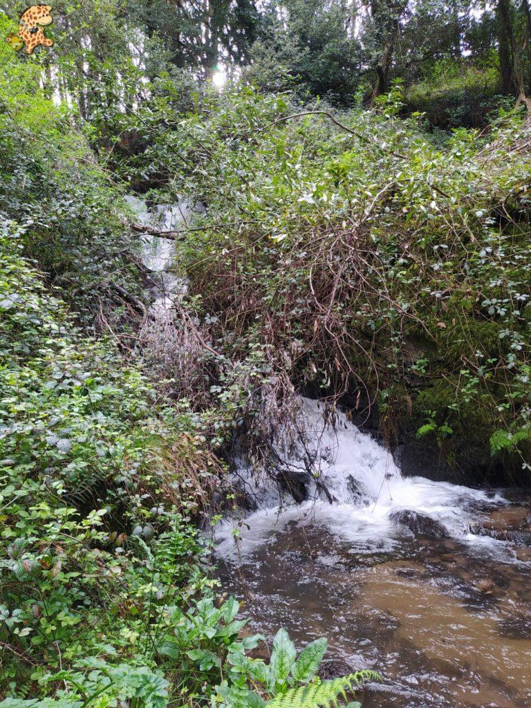 ruta rio sisalde 13 768x1024 - Ruta do río Sisalde, Arteixo (variante roja)