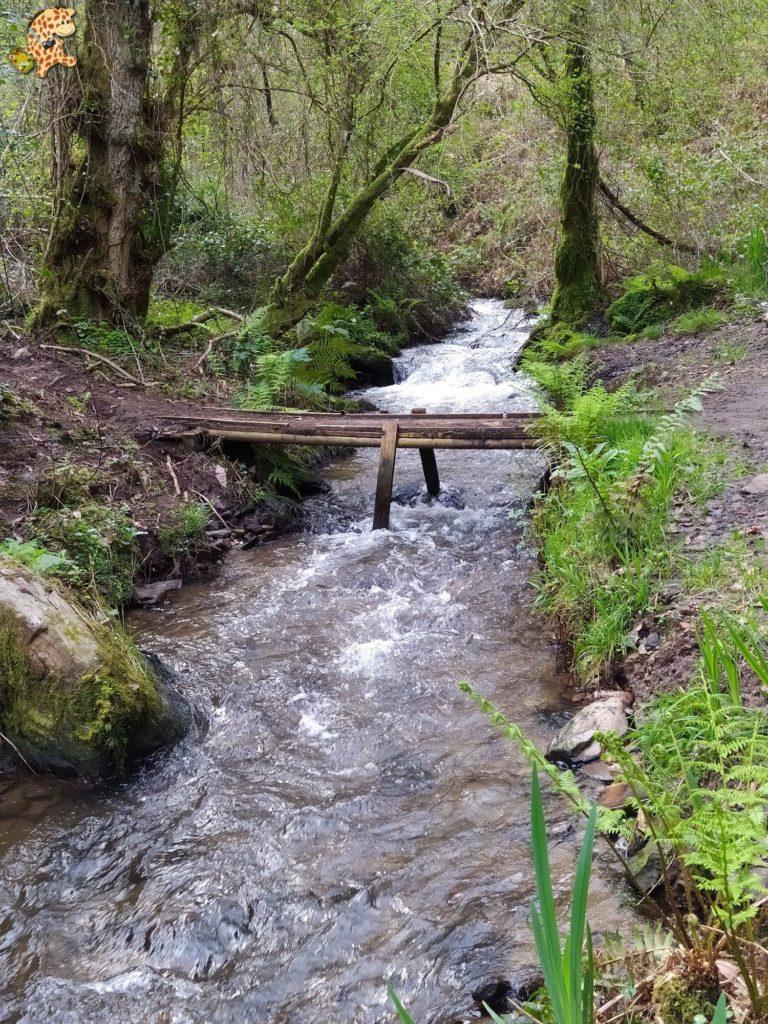 ruta rio sisalde 8 768x1024 - Ruta do río Sisalde, Arteixo (variante roja)
